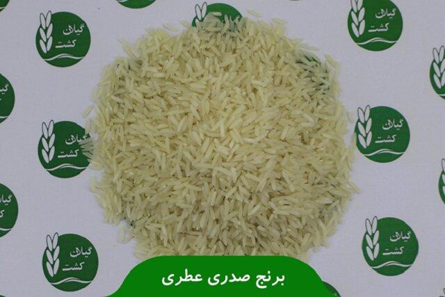 خرید عمده برنج بدون واسطه برنج با گیلان کشت