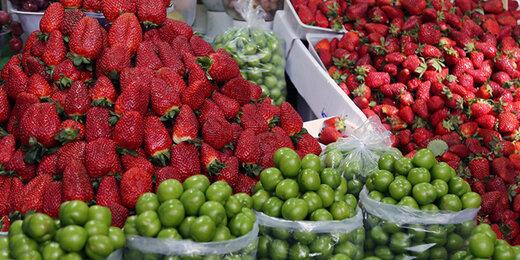 قشر متوسط هنوز توان خرید میوه های متنوع بهار را ندارند/ جدول قیمت ها