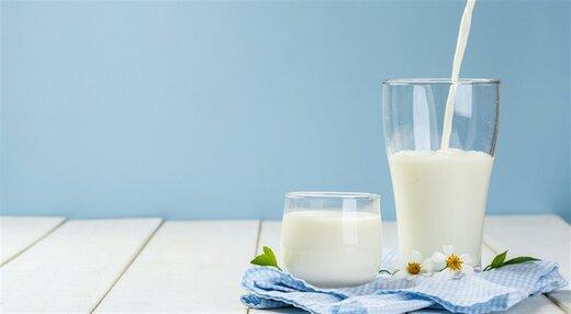 دامداران درخواست افزایش حدود ۵۰ درصدی قیمت شیرخام را به دولت ارائه کردند