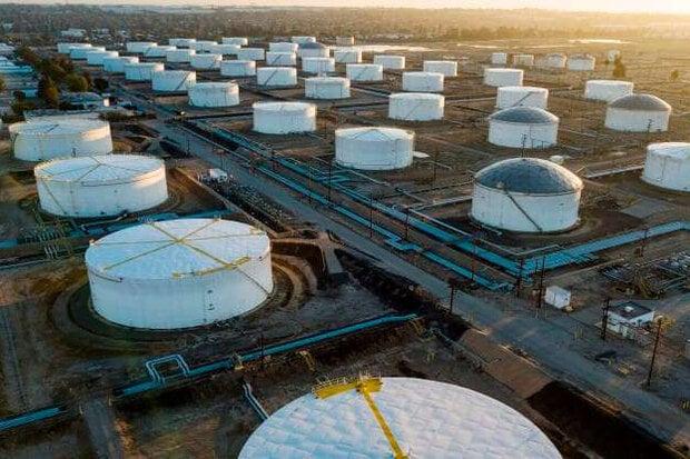 قیمت نفت خام تثبیت شد