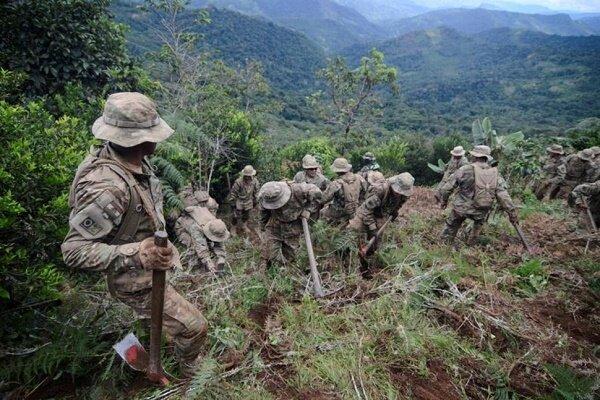 کشف سه اَبَرکارخانه تولید کوکائین در جنگلهای بولیوی