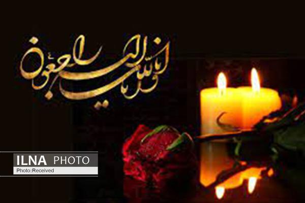تسلیت مدیرکل فرهنگی و اجتماعی سازمان تامین اجتماعی به مناسبت درگذشت طه محجوب