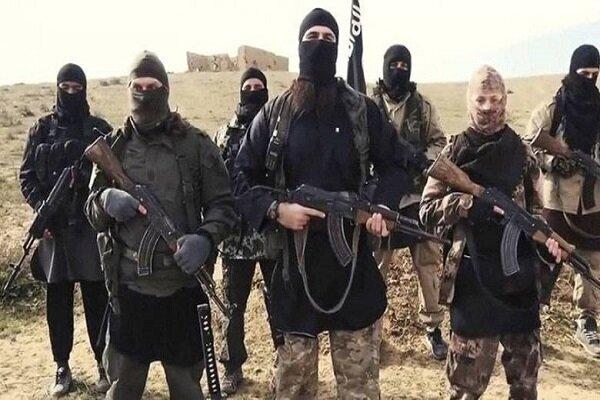 هشدار درباره بازگشت داعشی ها به دیالی عراق