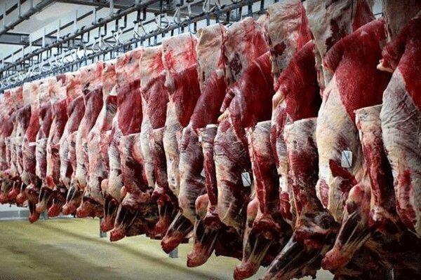 عرضه گوشت قرمز در کشتارگاه رسمی 49 درصد افزایش یافت