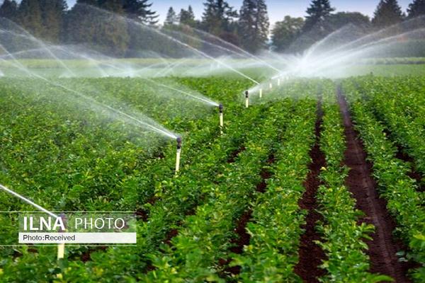 کشاورزی کشور دیگر ظرفیت آزمون و خطا را ندارد