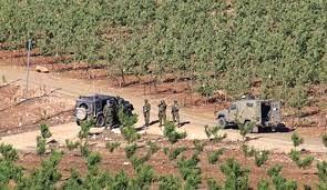 سرقت گله بز از یک چوپان در «شبعا» توسط نظامیان گشت اسرائیل