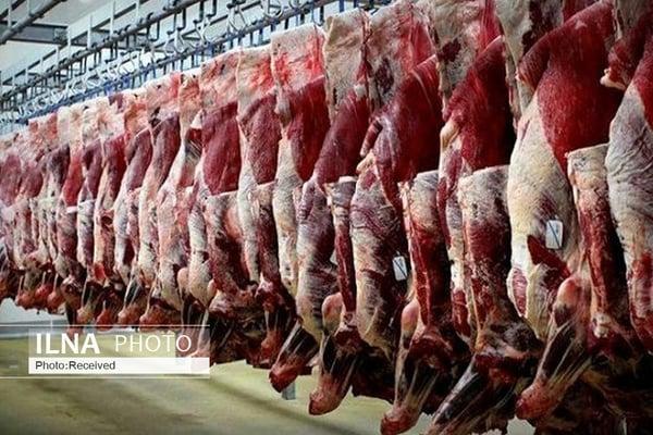 واردات ۱۵۰ هزار تن یونجه از روسیه/ انباشت ۷ میلیون راس گوسفند چربیگرفته در دامداریها/ پیشنهاد تهاتر دام زنده با نهاده را به وزارت کشاورزی دادیم