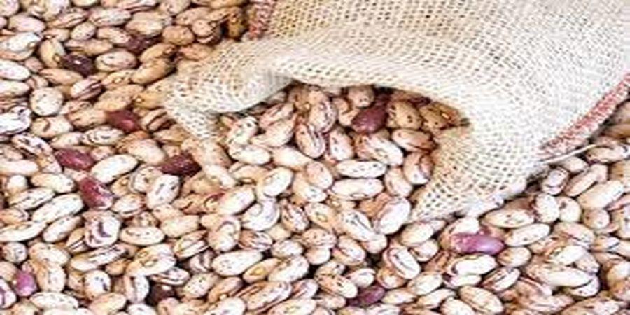 لیست قیمت لوبیا چیتی در بازار